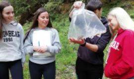 Ecology Fieldwork